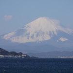 日本人にとっての青と白。5 0年以上続く東海道新幹線からの繋がりで…
