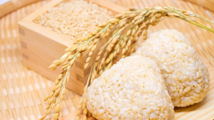 日本の国土の理にかなった「お米」は、とても優秀な食べ物